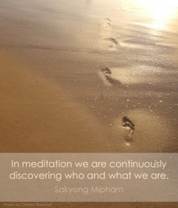 In meditation we are continuously discovering who and what we are. SMR
