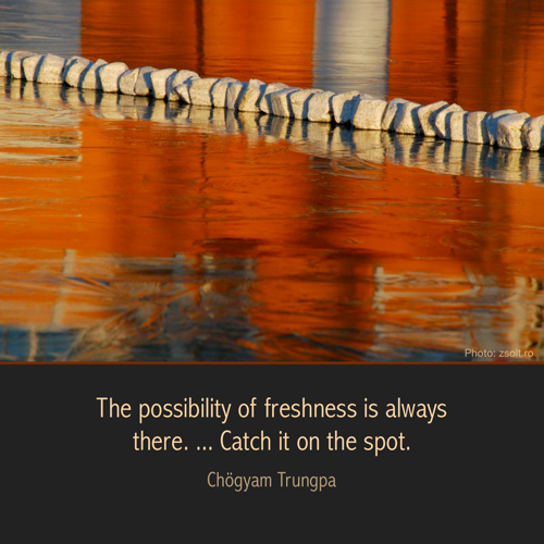 The possibility of freshness is always there. ... Catch it on the spot.  CTR